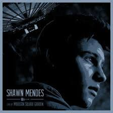 Shawn Mendes - Live At Madison Square.jpg