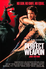 The Perfect Weapon.jpeg