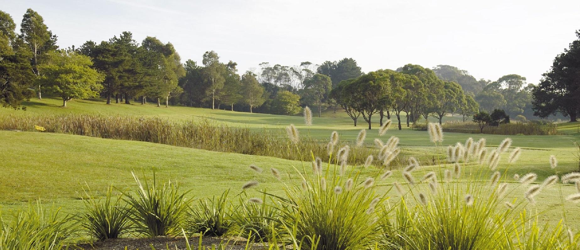 Golf - page banner.jpg