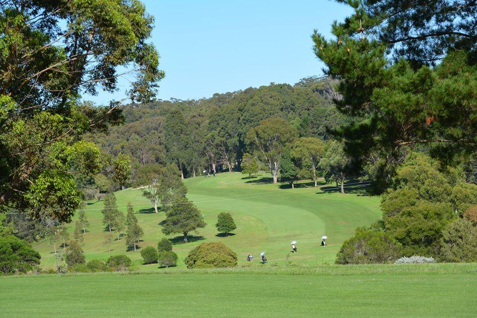 Golf - course 2.jpg