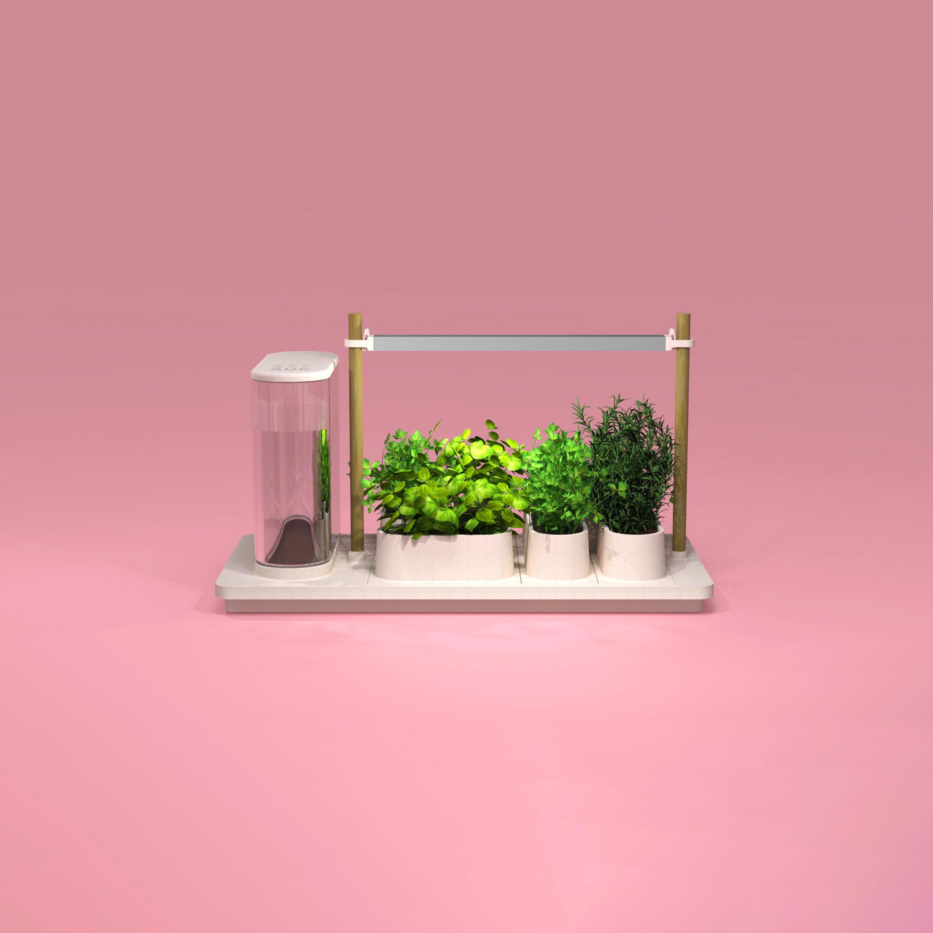Auk_render_pink.jpg
