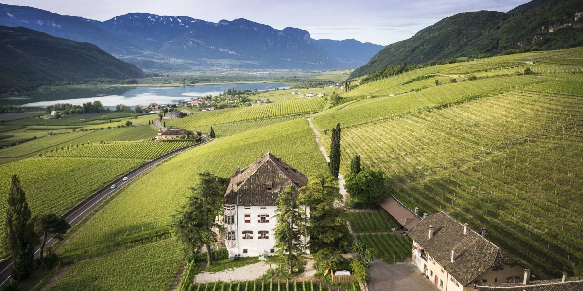 Castel Ringberg | Kaltern (BZ) - » Weddings