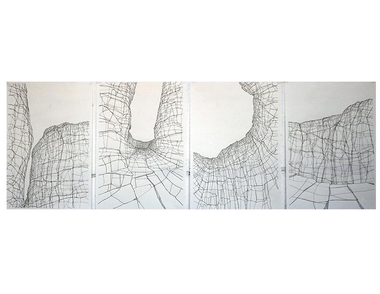 Série Grafic Nature