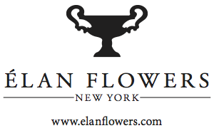 logo-wordmark-url-black copy.png