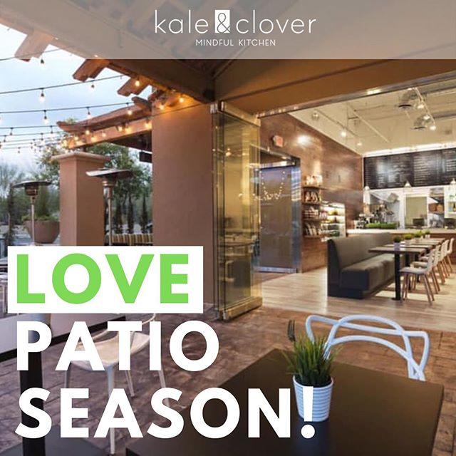 @kaleandclover  8 Month Patio Season! LOVE Arizona!  #patioseason #northscottsdale #loveaz
