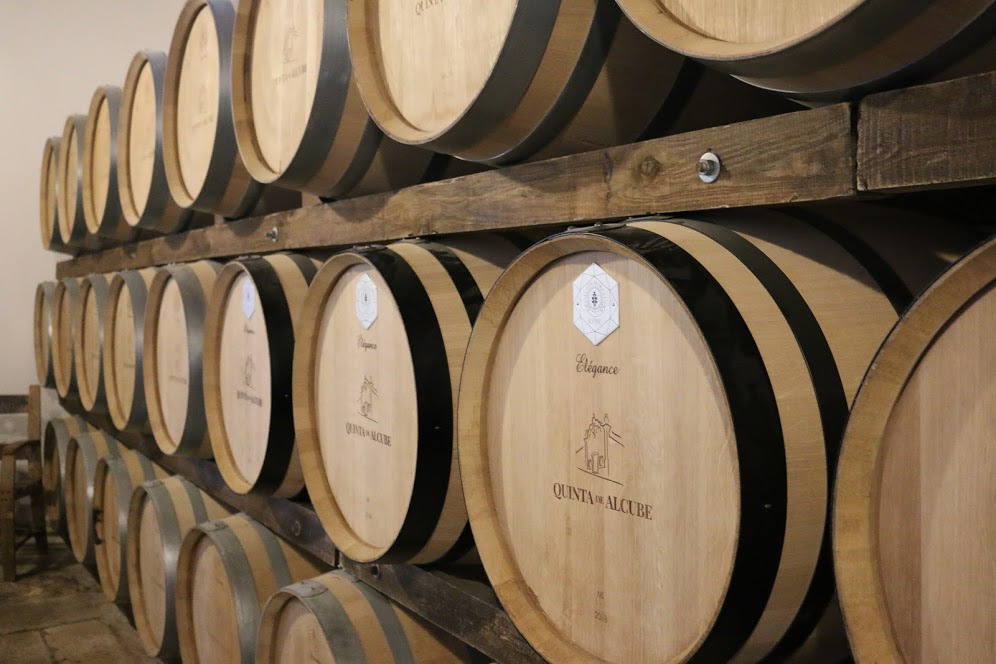 Barrel room at Quinta de Alcube