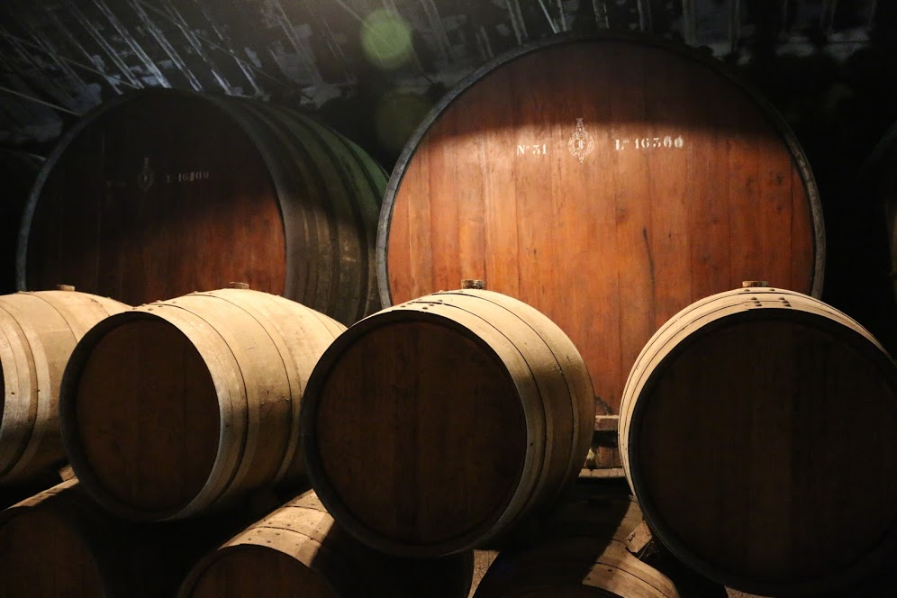 Brazilian Mahogany barrels in the background, holding anywhere between 18-20,000 Liters of wine