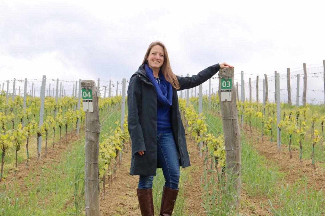 Visiting the vineyards at Vinařství Václav