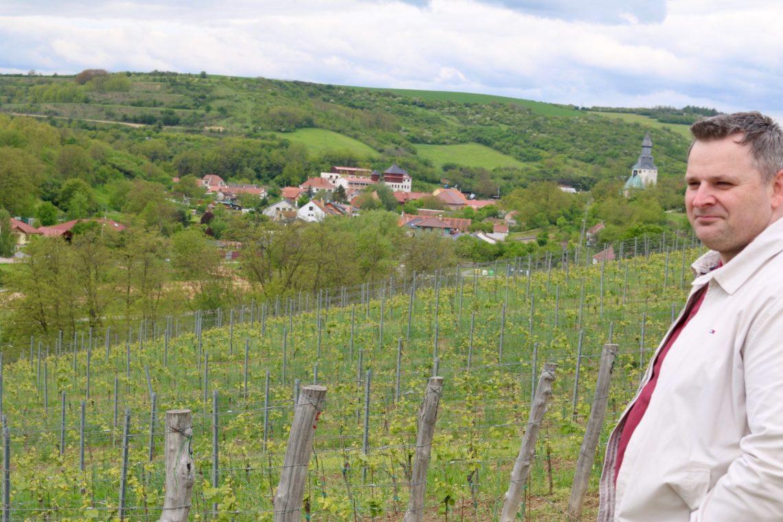 Petr Očenášek at Václav vineyards