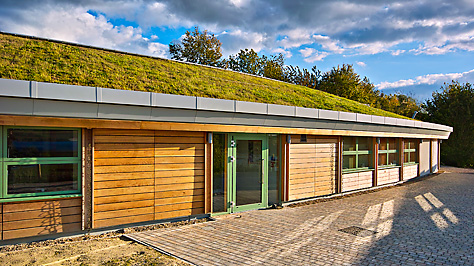 green roofing 1.jpg