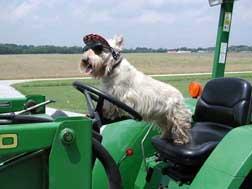 Captain-Tractor06b.jpg