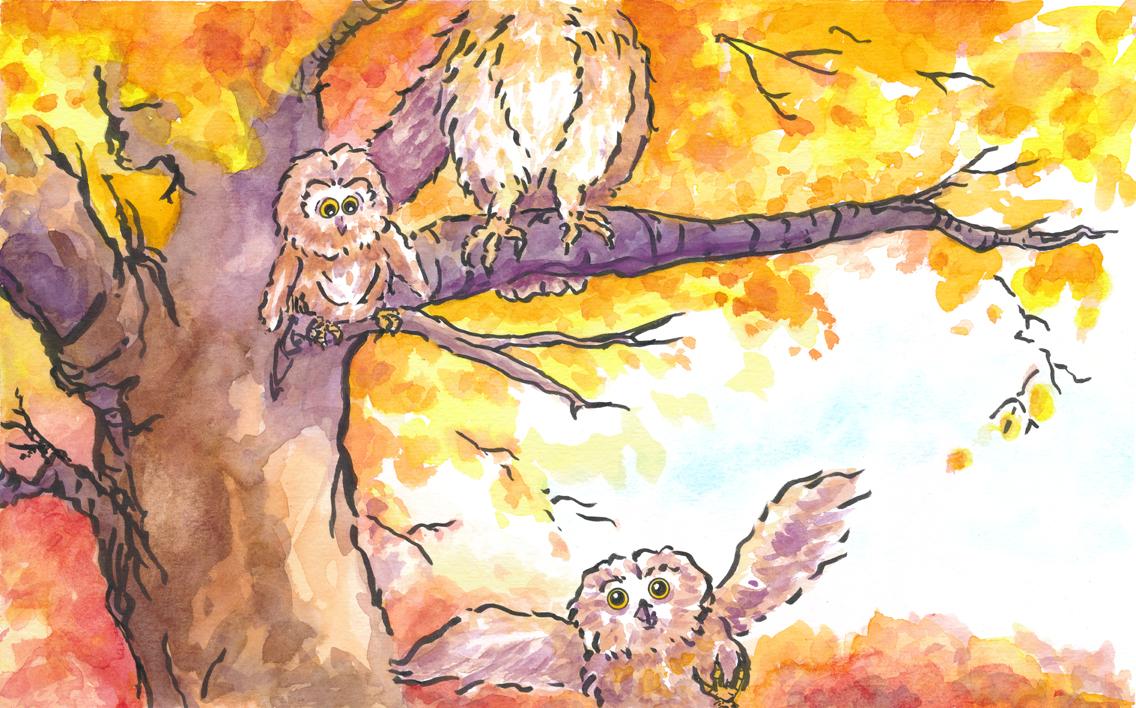 owl_flight_school.jpg