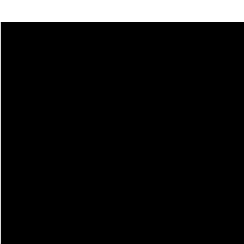 logo_r6s.png