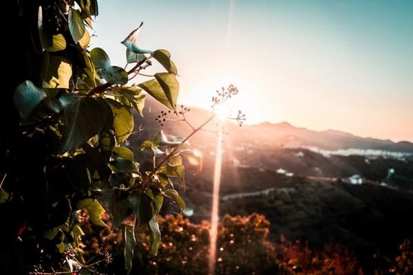 nerja-spain-sky-sunset.jpg