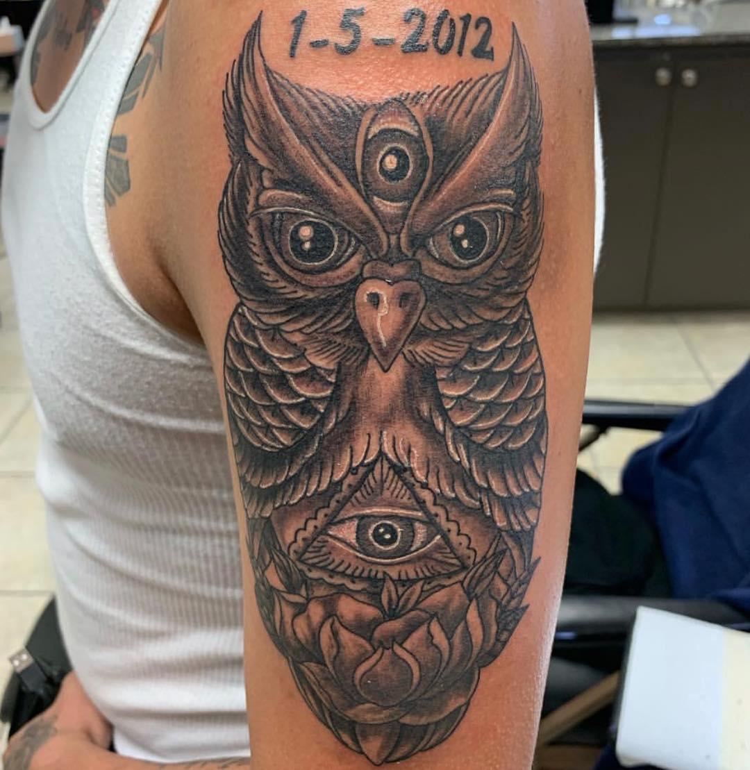 owl curtis.jpg