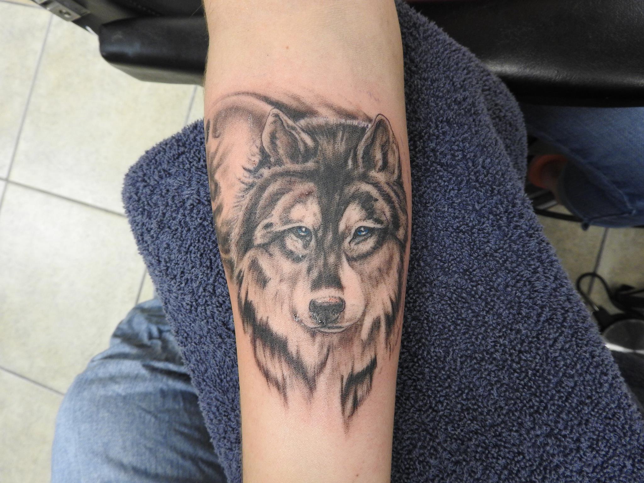 curtis wolf.jpg