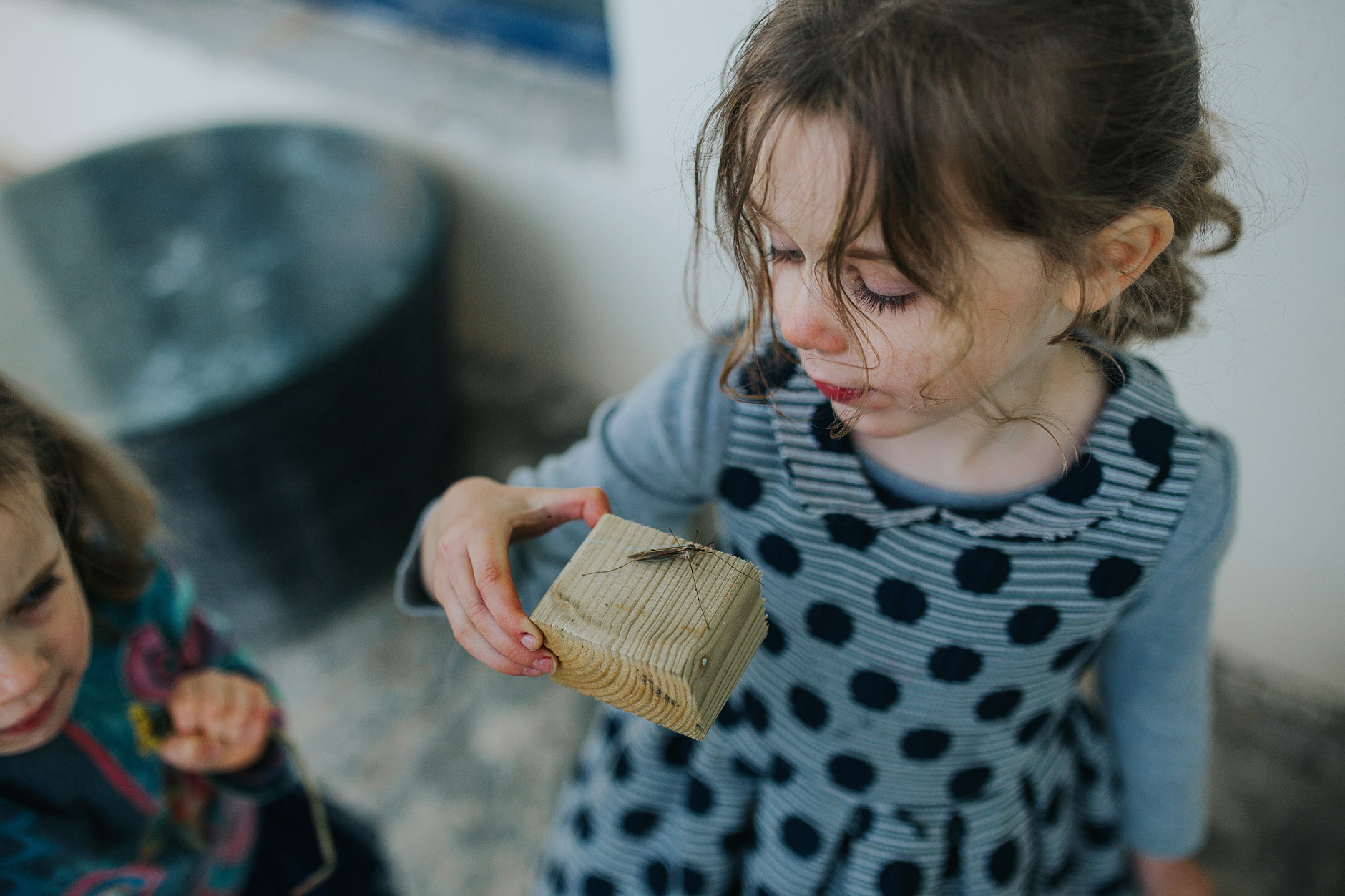 Little girl holding a wooden block with an insect on it