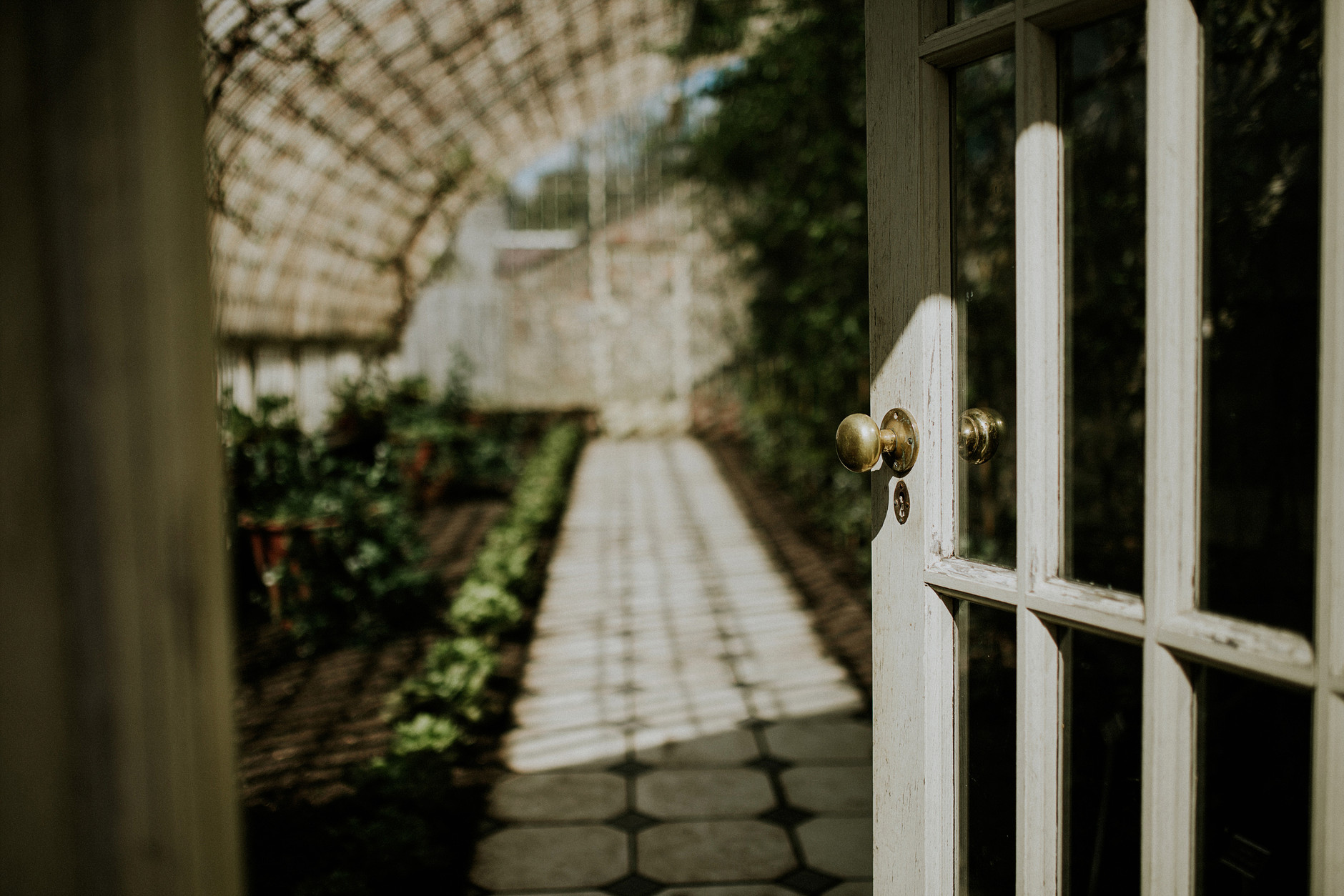 spring-botanical-gardens-dublin-photography-0013.jpg