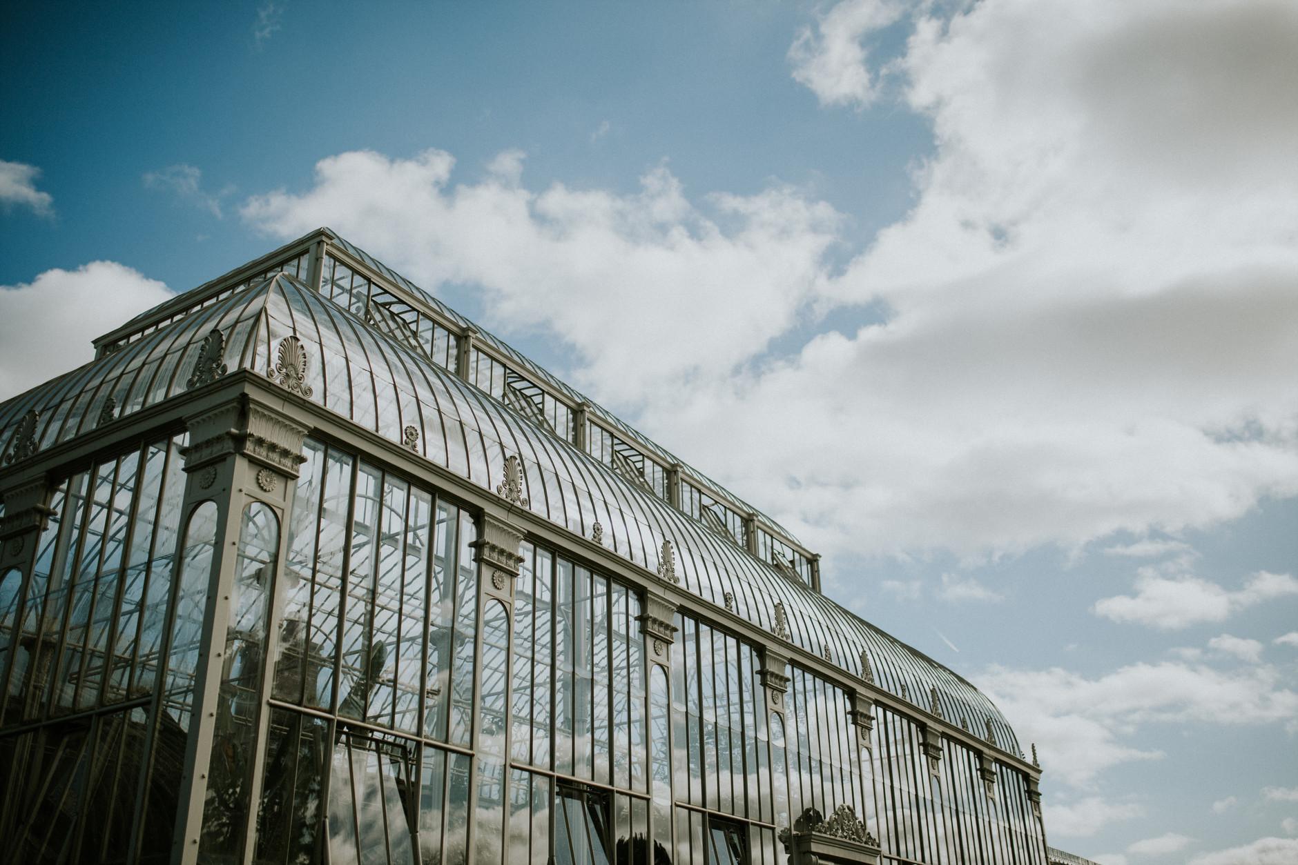 spring-botanical-gardens-dublin-photography-0020.jpg