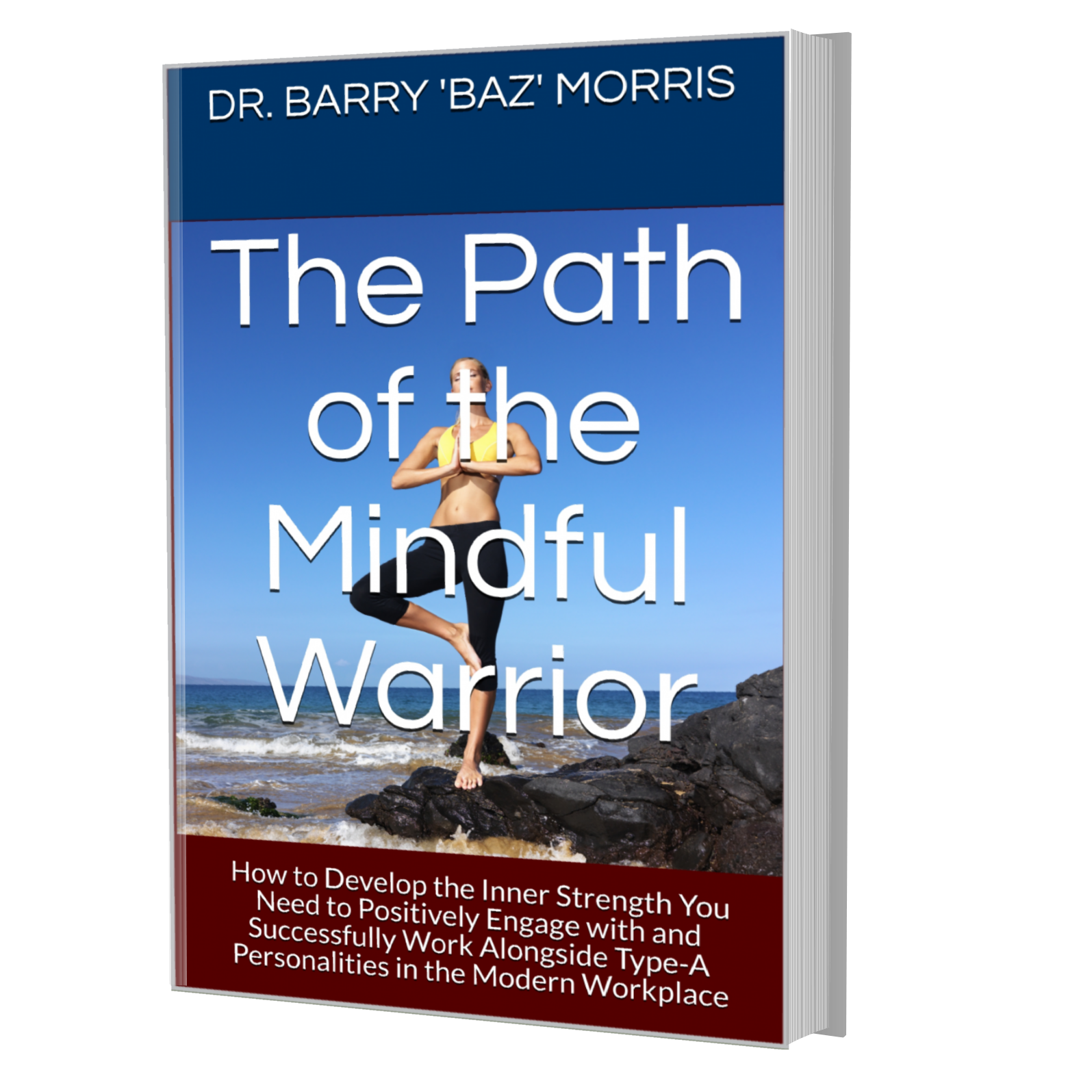 The Path of the Mindful Warrior - How to Develop the Inner Strength to Positively Engage with and Successfully Work Alongside Type-A Personalities in the Modern Workplace