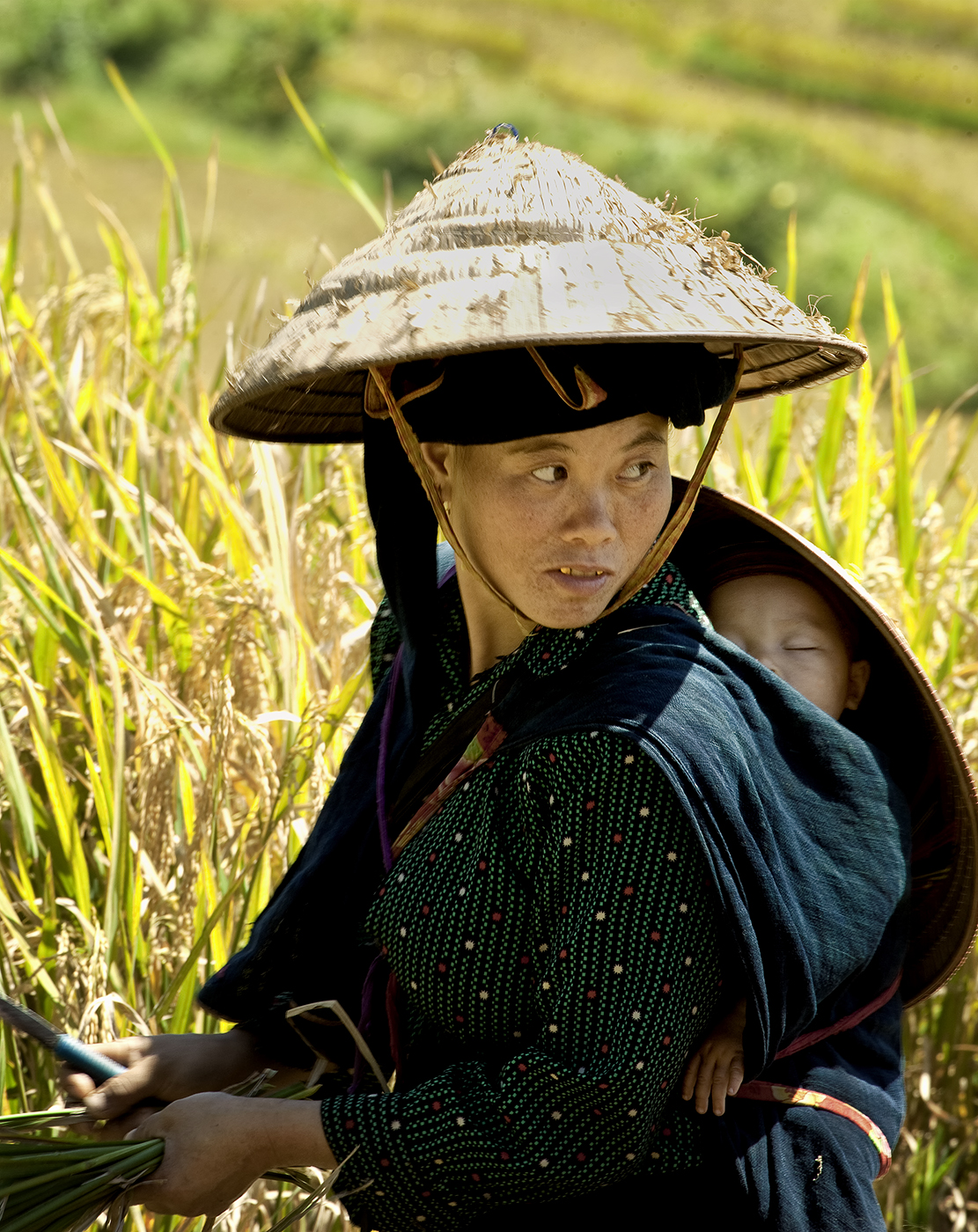 Mother and Child in the Rice Field