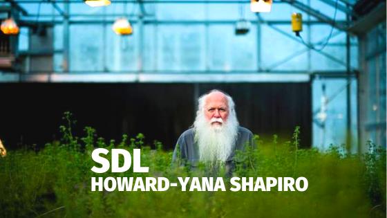 SDL Blog (2).png