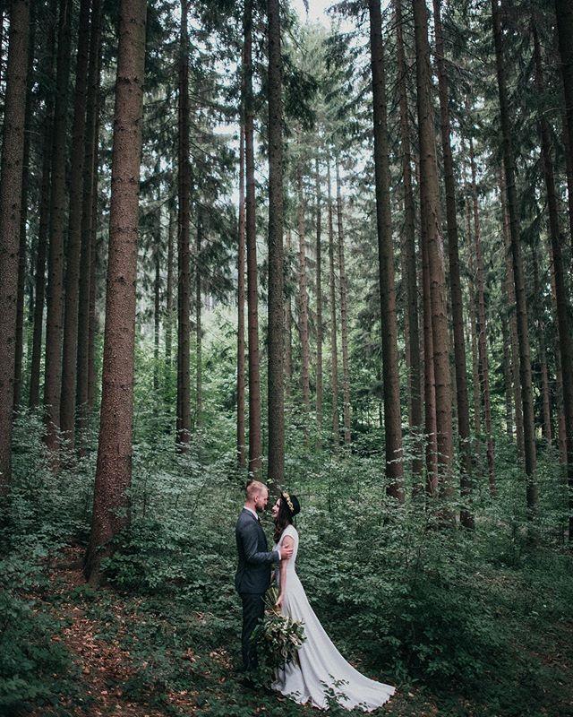 I've got time, I've got love  svatby svatebním fotografkam @terikruzelova ❤️📸 #fotimlasku #laska #svatbavlese #miluj #anotherwildstory #lookslikefilm #lookslikefilmwedding #fotimsvatby #dnessvatbujem #nevesta #zenich #anoberu #czechwedding #wanderingphotographers #authenticlovemag #svatebnifotografka