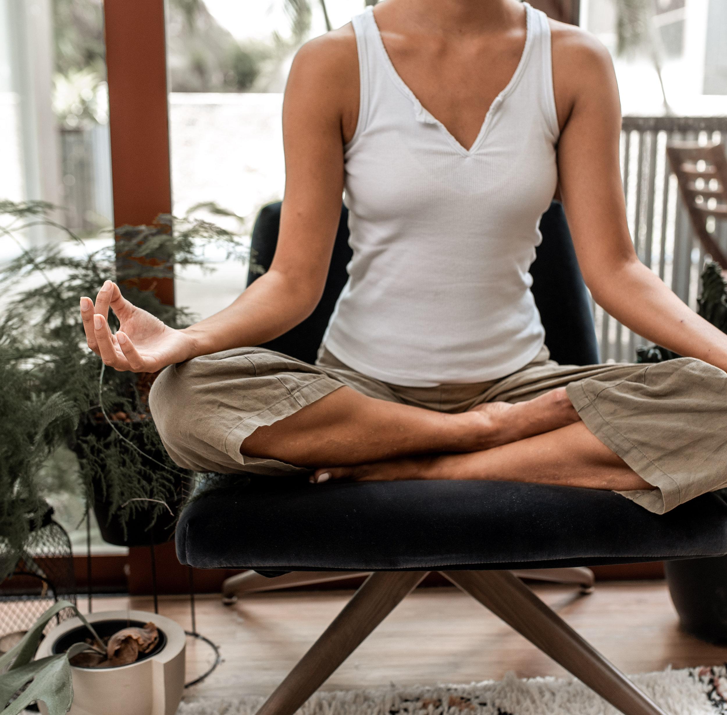 wellness programs -