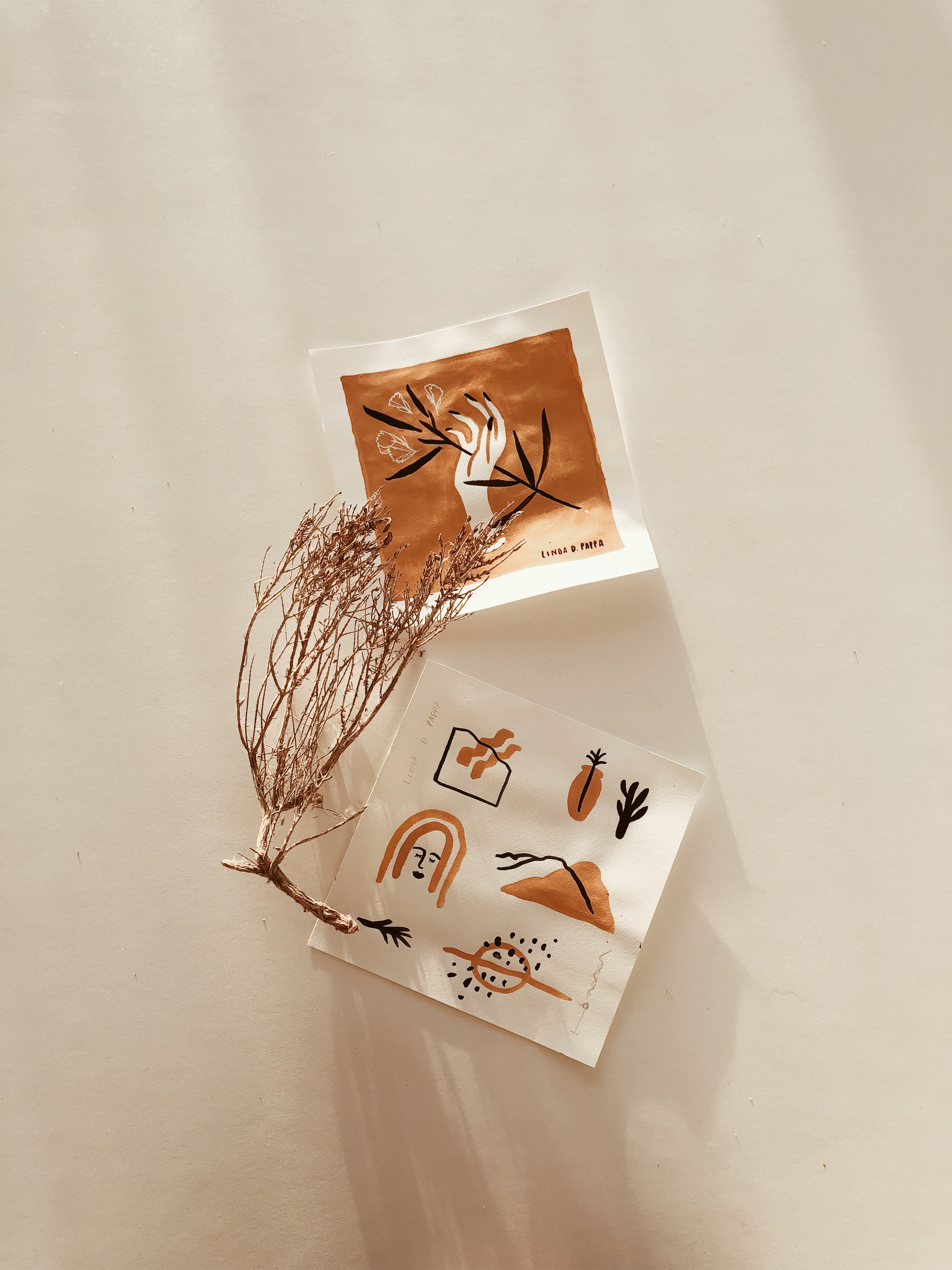 Linda-Pappa-Apricot-Series-02.jpeg