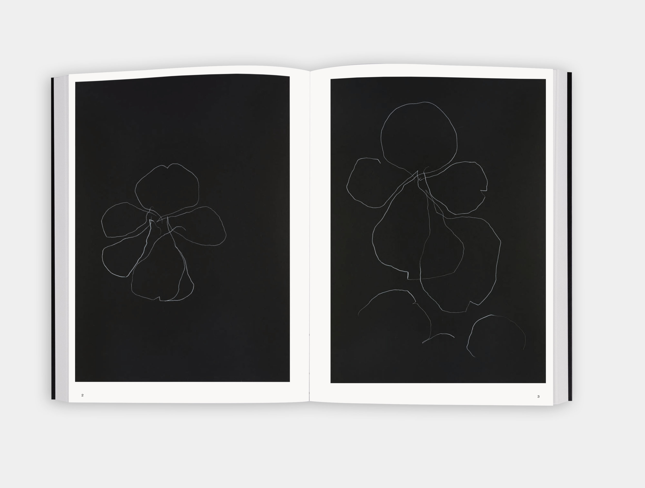 Night Orchids (2016), book by Brian Clarke, published by HENI