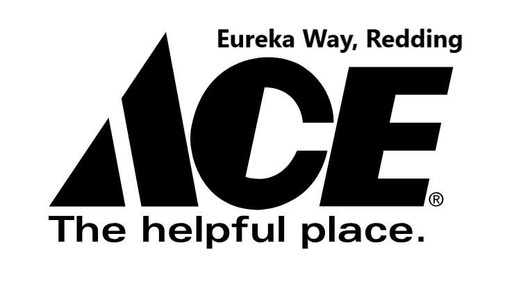 ace_logo_on_white.jpg