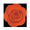 Lumette_botanical-icons_rose100.png