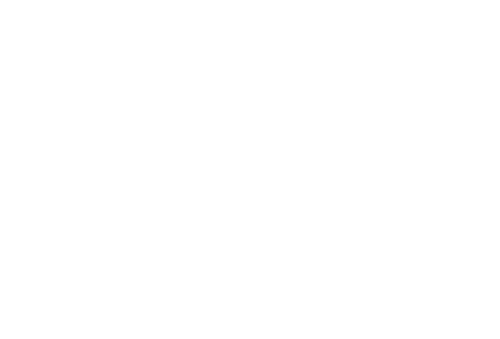 toyota-logo-white.png