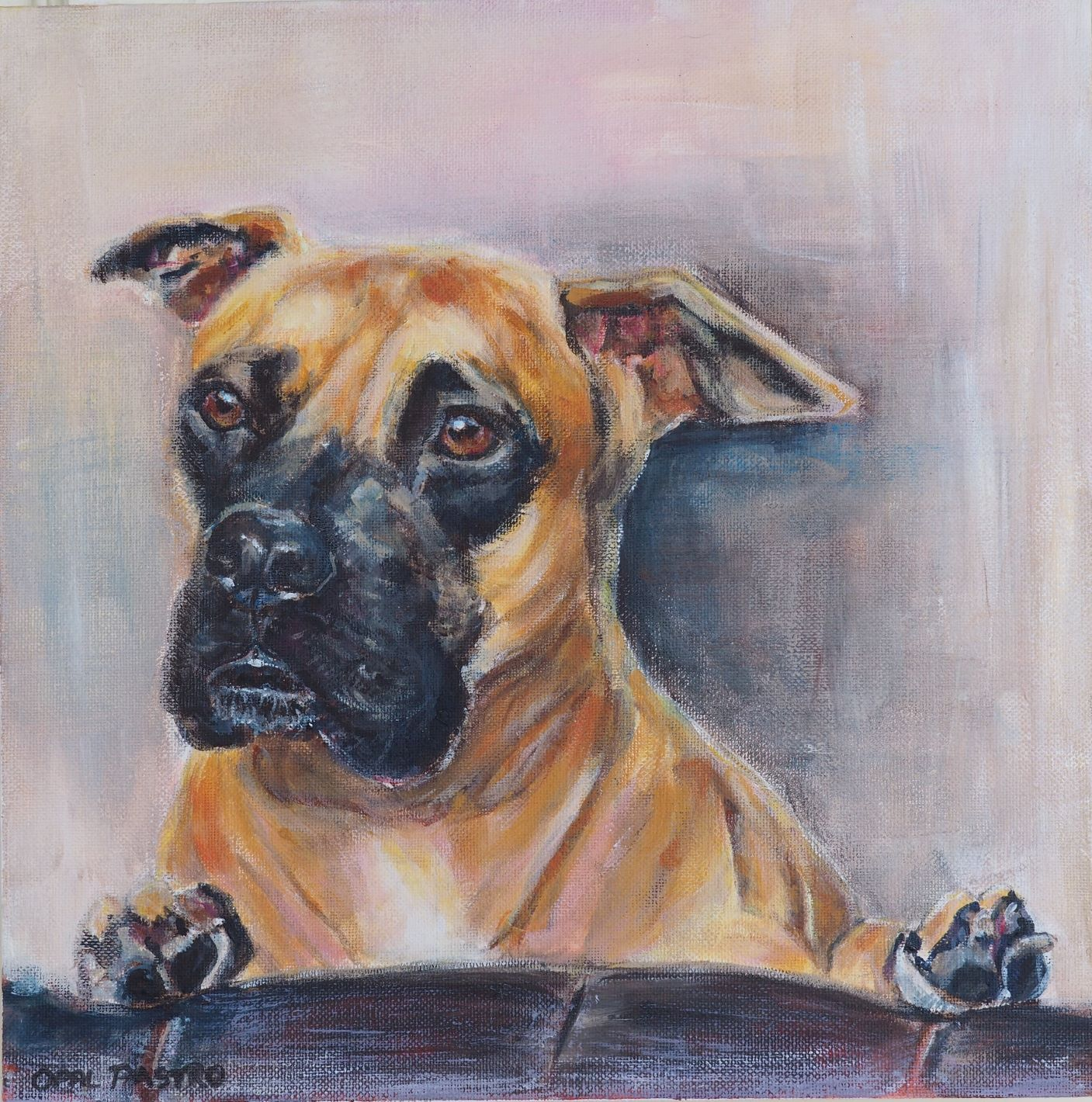 """""""This is a beautiful likeness of Bronco""""… - The eyes are exact - such an important window to the soul.Commissioned by Jamie for her sisterAcrylic on canvas12"""" x 12""""Texas, USA"""