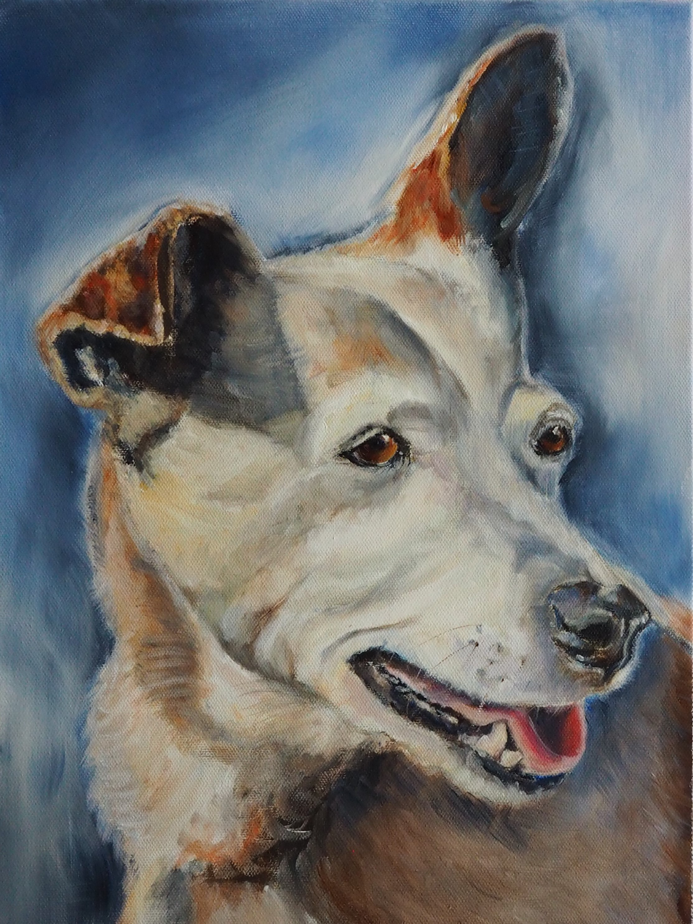 Goldie's Memorial Portrait - It took me a few months before I could tackle painting her memorial portrait. When I paint, I spend a lot of time talking to the animal and getting to know them as their image grows on my canvas. But when I started working on Goldie's portrait, I discovered that it was so healing. I started remembering all those fun times we had together, and all the love she gave me, and as the painting emerged, I felt like she was back with me.It would be an absolute honor for me to help you remember your beloved friend whom you miss so much.
