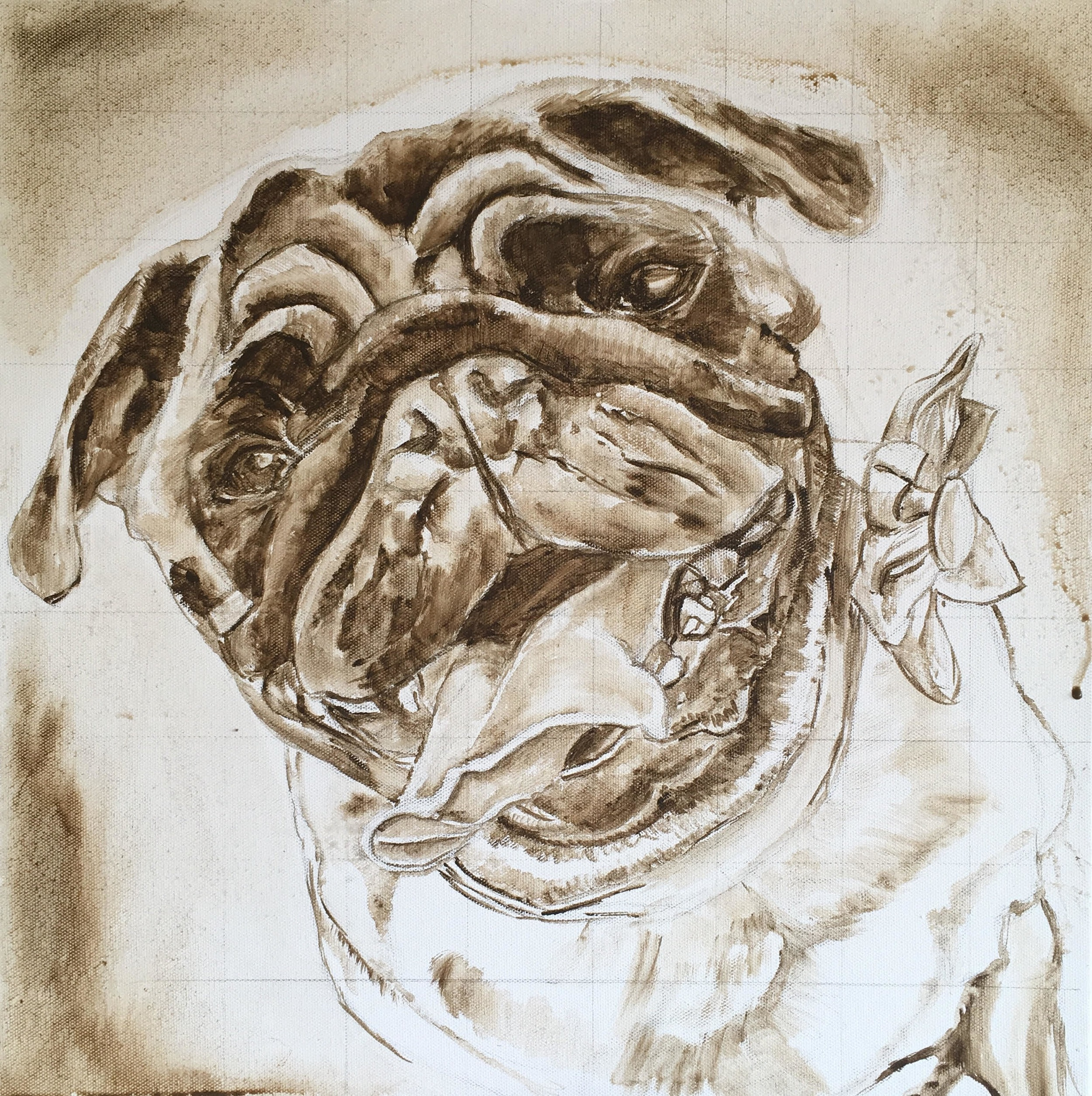 DOG CUSTOM PORTRAIT. TONAL UNDERPAINTING OF TILLY THE PUG BY OPAL PASTRO ART