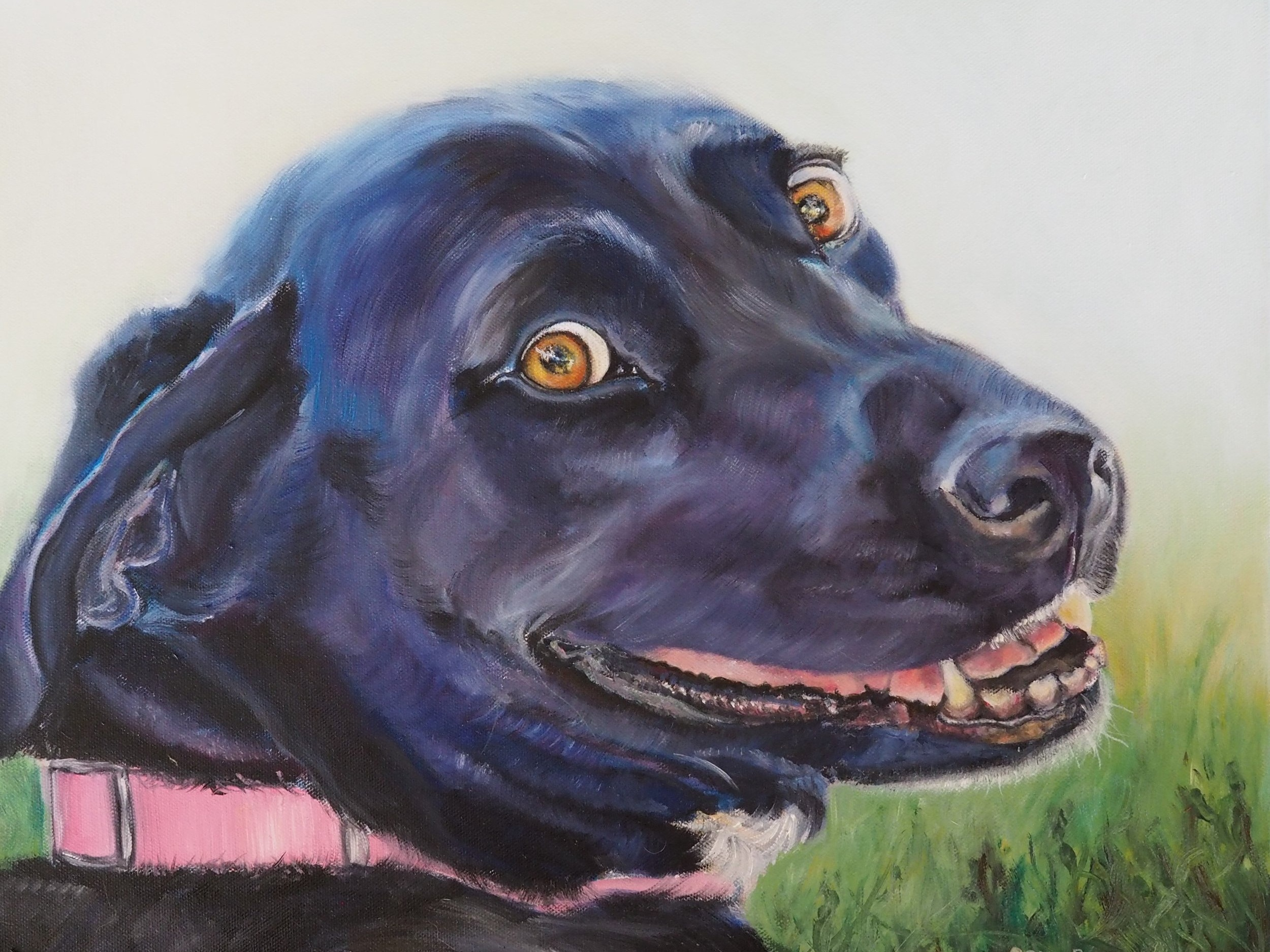 CUSTOM DOG PORTRAIT OF BLACK KELPIE SMILING HAND PAINTED  IN AUSTRALIA  FROM A PHOTOGRAPH BY OPAL PASTRO ART