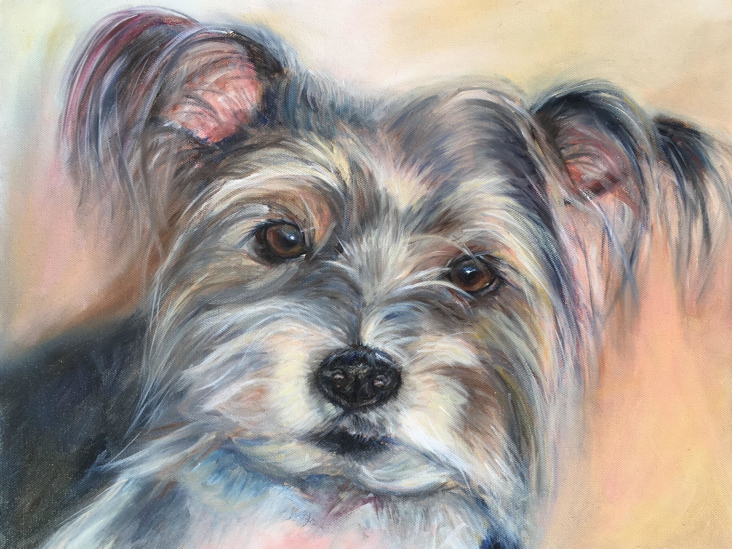 DOG PORTRAIT OF SCRUFFY TERRIER BY OPAL PASTRO ART