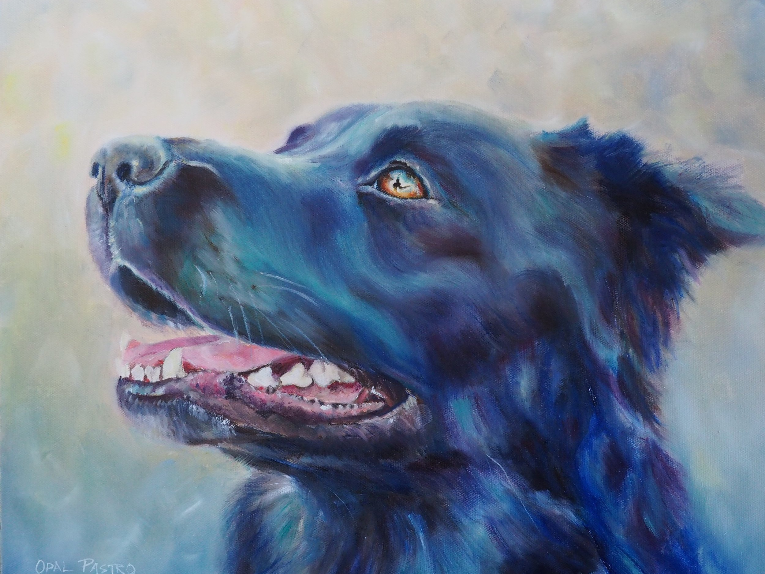 DOG PAINTING HANDPAINTED BLACK KELPIE BY OPAL PASTRO ART