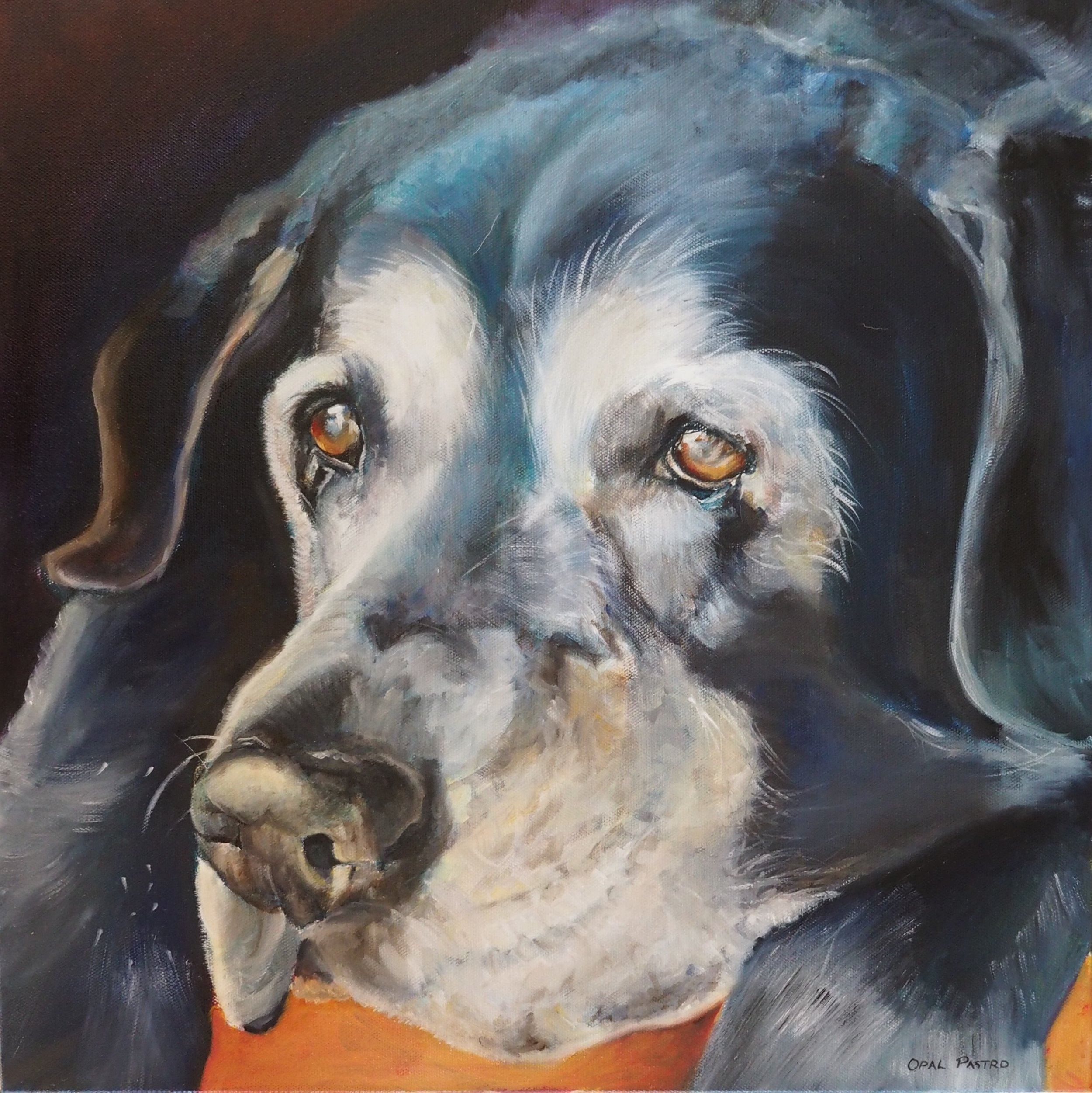 OLD DOG PORTRAIT HAND PAINTED IN AUSTRALIA BY OPAL PASTRO ART