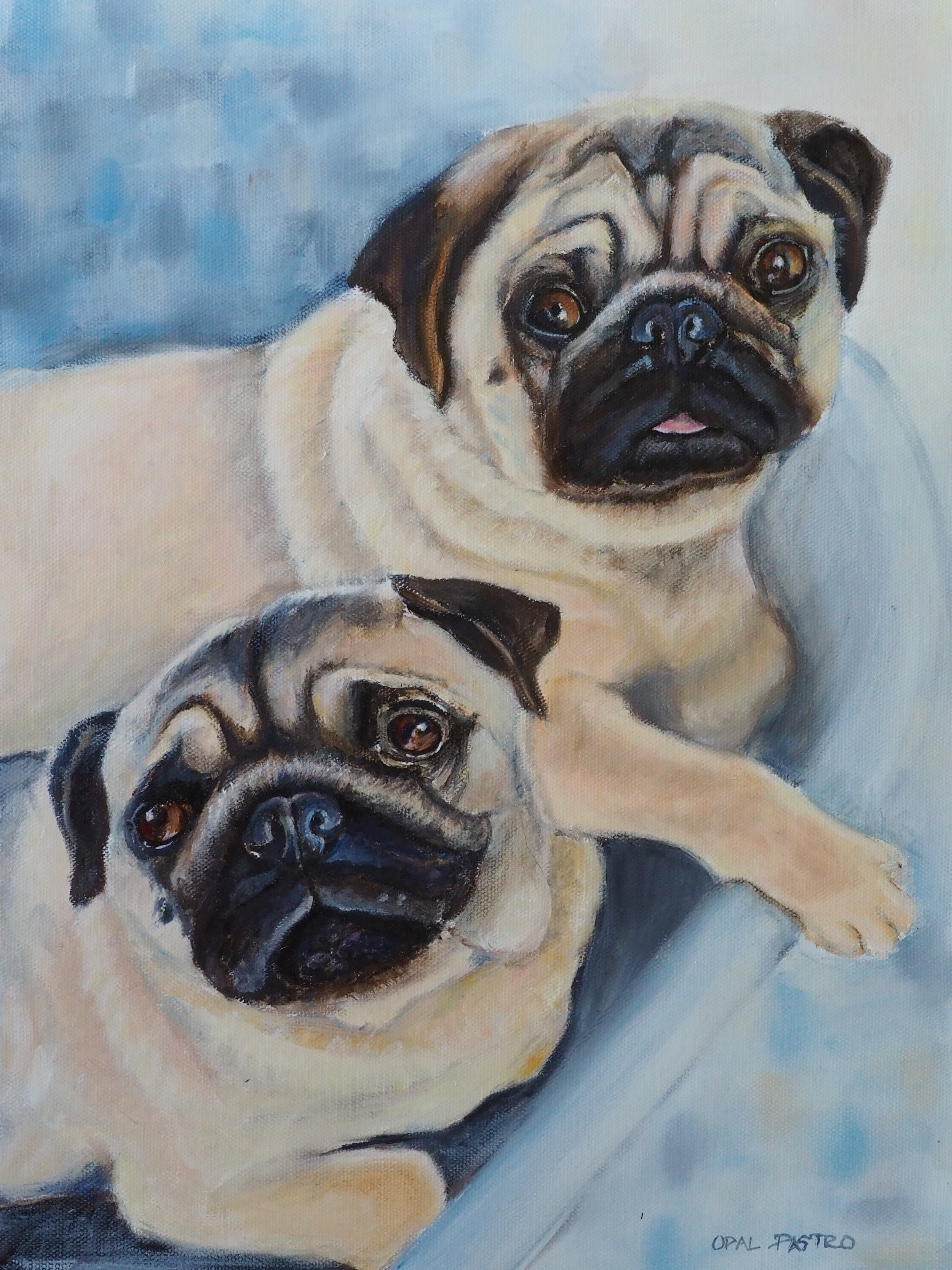 DOG PAINTING OF PUG SIBLINGS IN BLUE TUB BY OPAL PASTRO ART