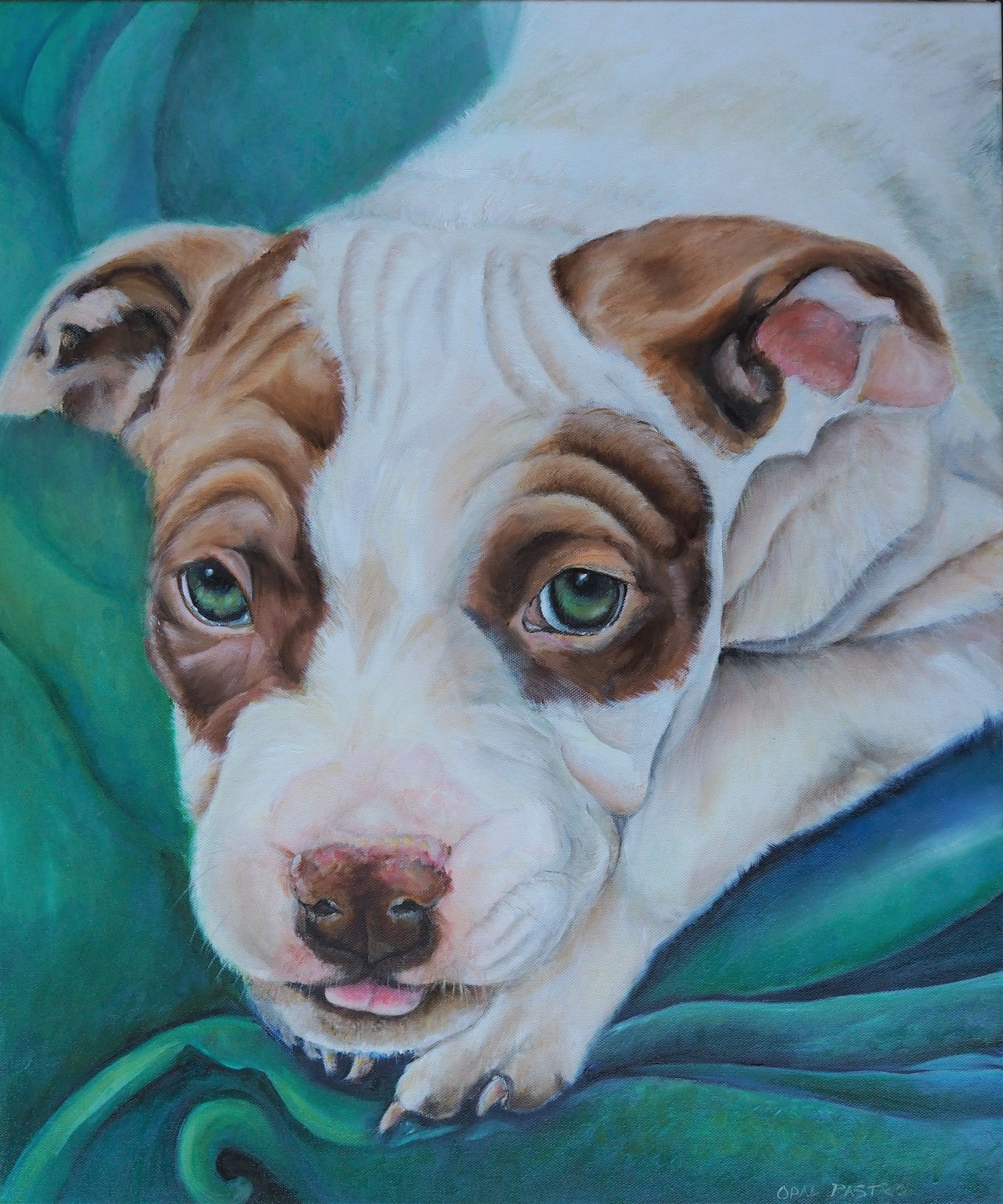 CUSTOM DOG PORTRAIT OF AMERICAN PITBULL TAN AND WHITE WITH GREEN BLANKET BY OPAL PASTRO ART