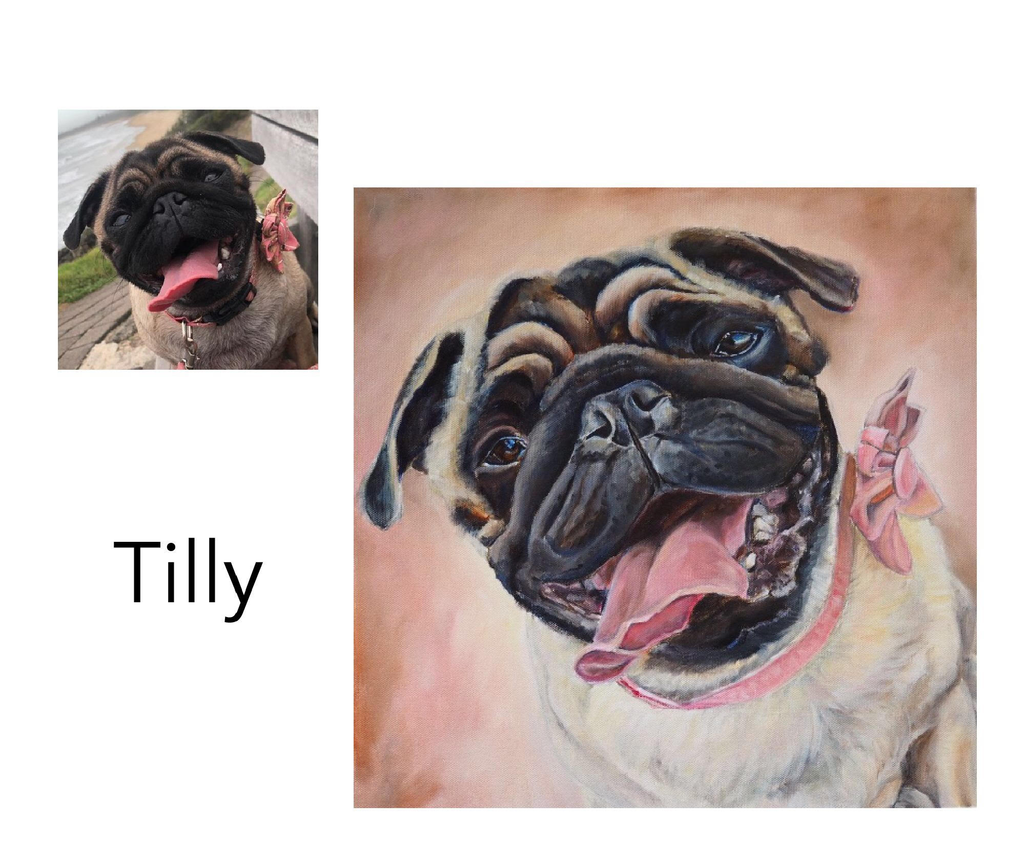 """Pug - Acrylic and oil on canvas 18"""" x 18"""" (46cm x 46cm)Private commissionSawtell, NSW—————————————-Tilly loves wearing pretty attire custom made for her by her Mum. She is the sunshine in the lives of her humans"""