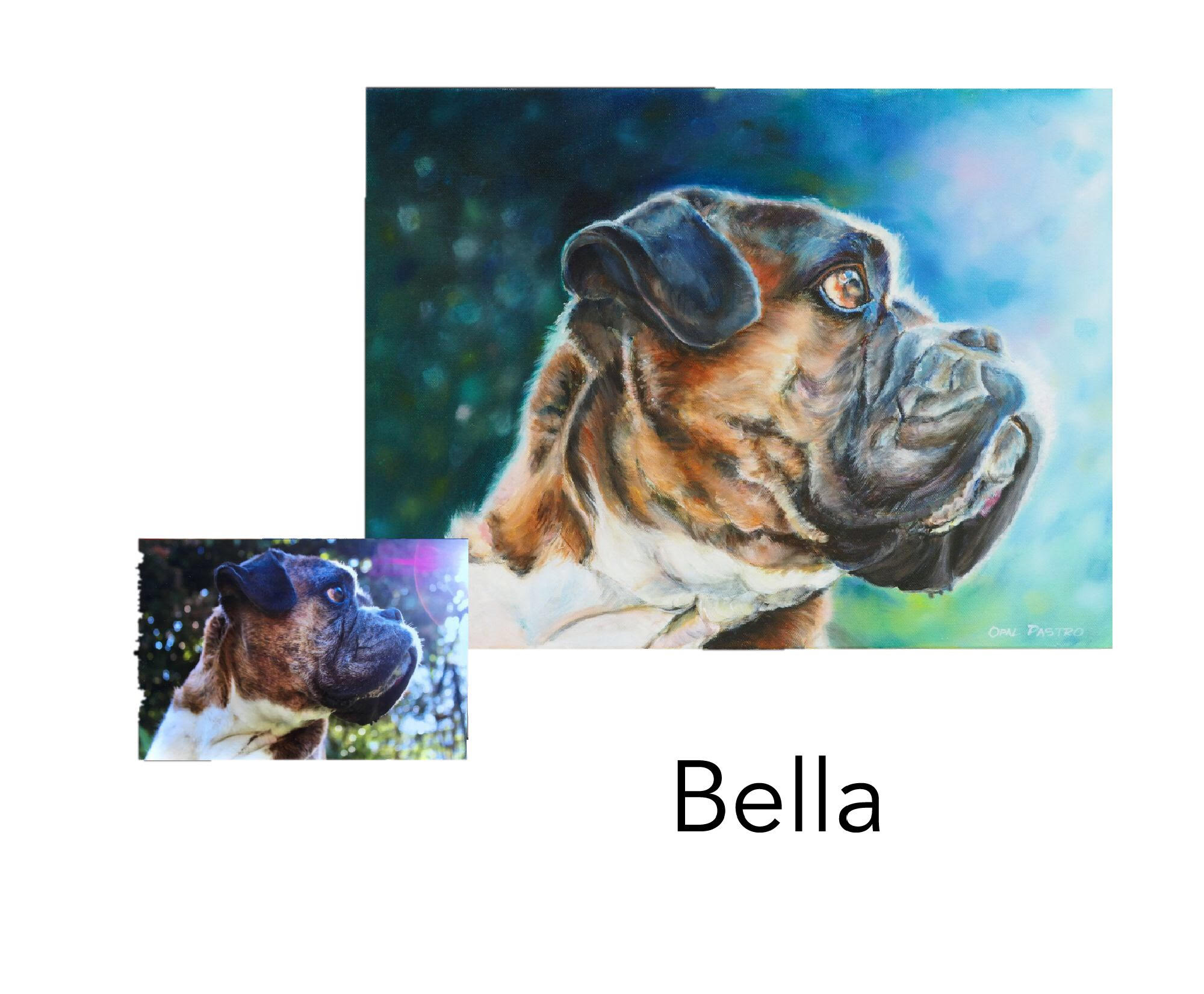 "Boxer - Acrylic and oil on canvas 14"" x 18"" (35.5cm x 45.72cm)Private commissionBellingen, NSW—————————————-Bella was a much loved family member who is missed very much by her family. Her memorial portrait honors her memory."