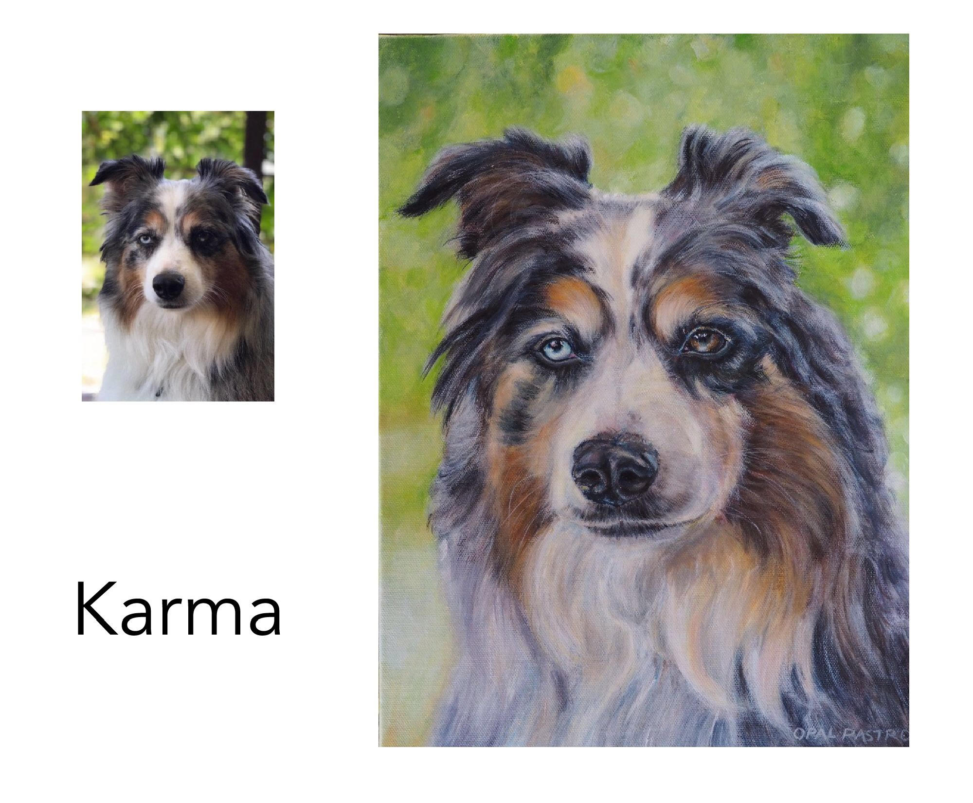"Australian Shepherd - Acrylic on Canvas, 30.5cm x 41cm (12"" x 16"")Private commissionSydney, NSW—————————————-Karma is a beautiful Blue Merle Australian Shepherd with bi-coloured eyes. I met her at a market where I had a pet portrait stall. She was intelligent, gentle and well behaved- a real sweetie. Such a delight to paint."
