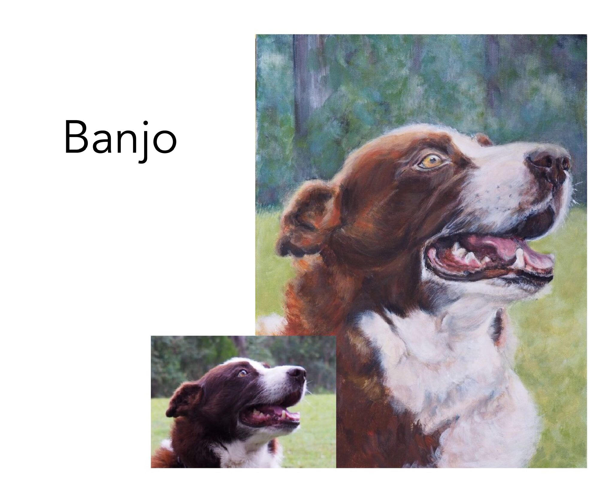 """Kelpie/Koolie mix - Acrylic and oil on Canvas, 12"""" x 16"""" (30.48cm x 40.64cm)Artist's private collectionRepton, NSW—————————————-Banjo is a stick dog. It was difficult to photograph him when we met, as it was a rain day and he just wanted to run play with his stick. He also has a beautiful smile."""