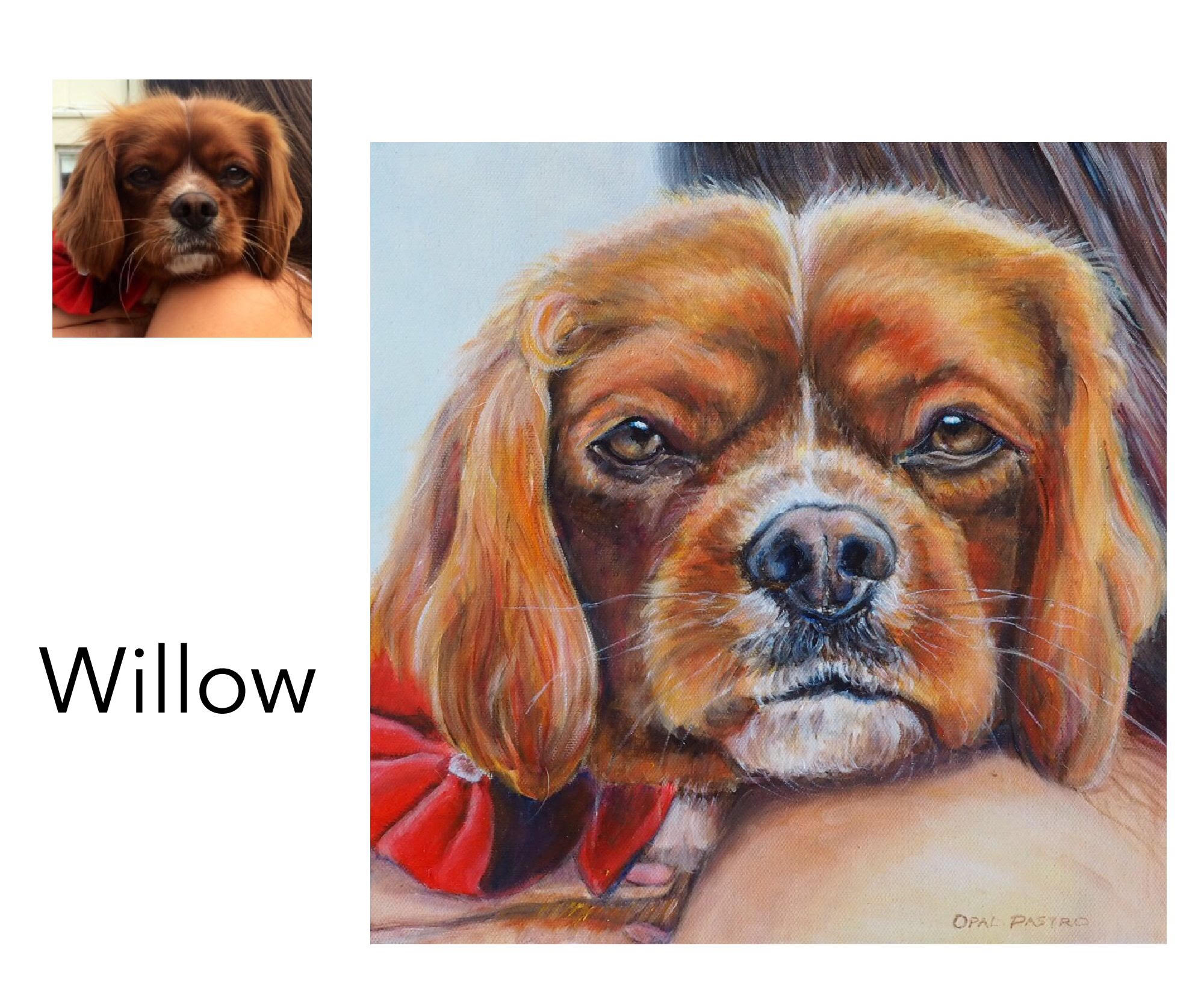 """Cavalier King Charles Spaniel - Acrylic and oil on canvas 12"""" x 12"""" (30.48cm x 30.48cm)Private commissionHobart, Tasmania, Australia———————————Willow is a sweet girl much loved by her whole family. This painting was commissioned as a birthday gift for Mum, and was a beautiful surprise."""