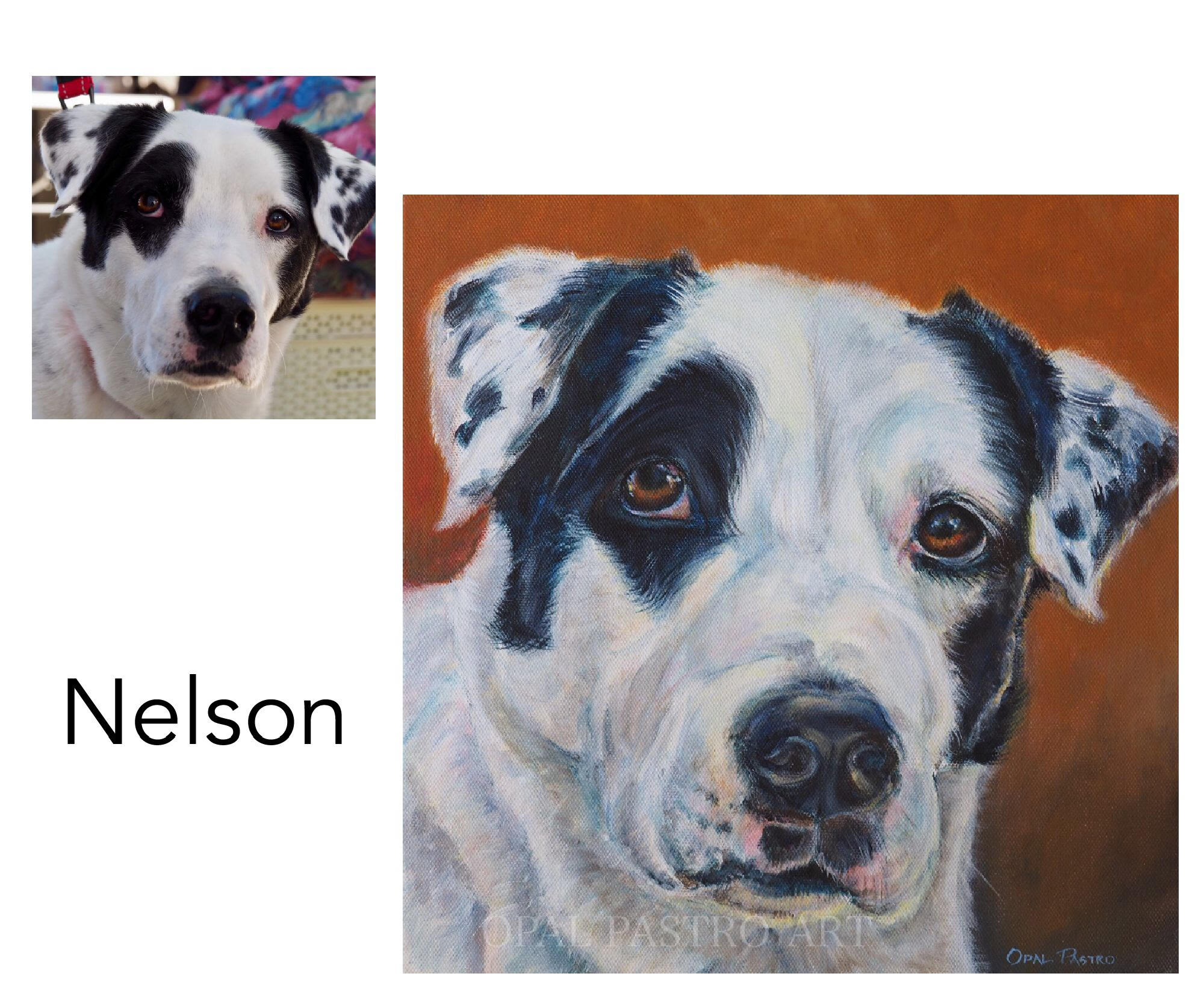 Labrador/Dane mix - Acrylic on canvasPrivate commissionCoffs Harbour, NSW———————————I met and photographed this beautiful gentle boy at the Harbourside Market in Coffs Harbour. He was so obliging and sat handsomely for his photo. When the painting was finished,  Lord Nelson came back to the market to collect his custom portrait