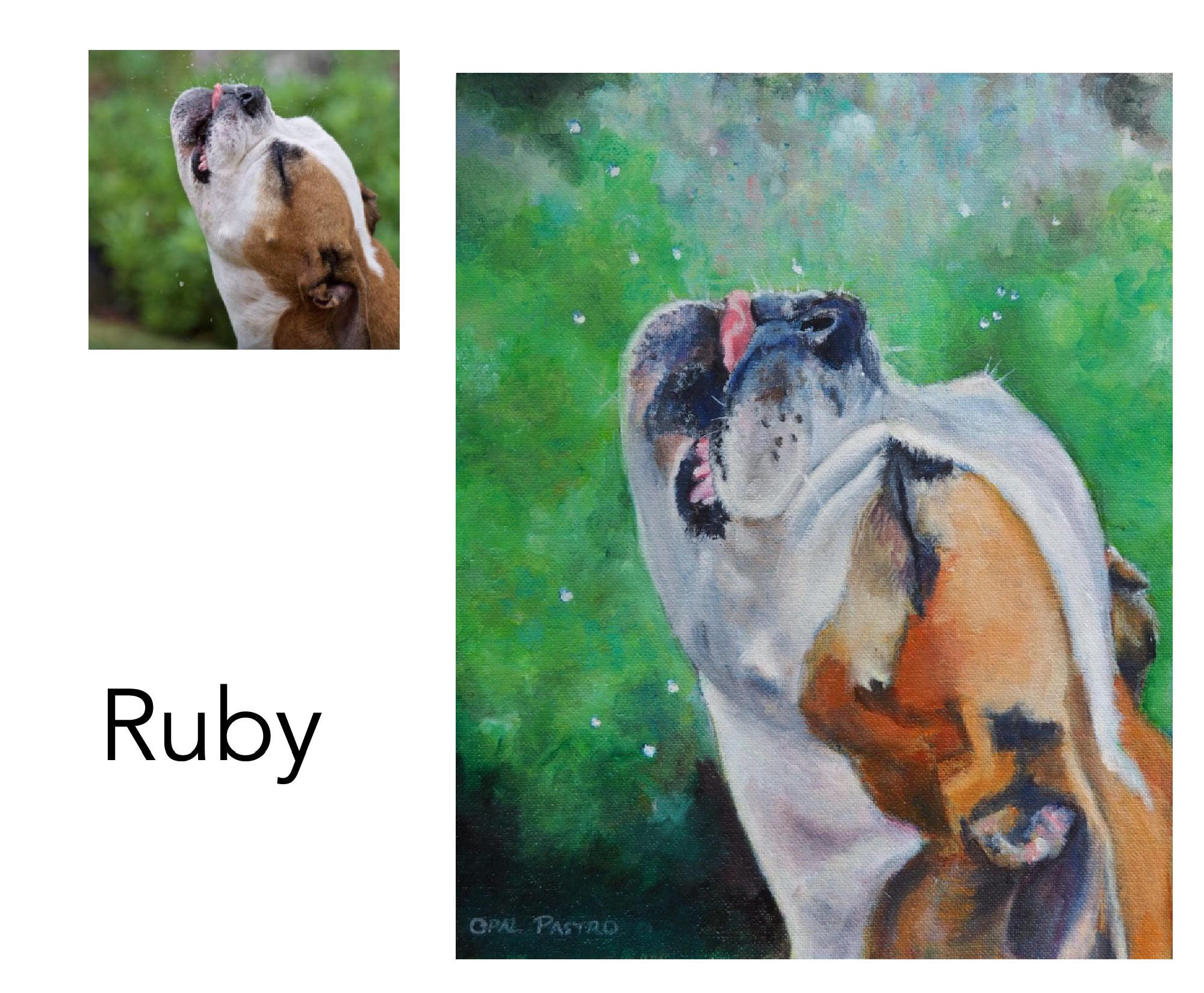"Australian Bulldog - Acrylic and oil on canvas 10"" x 12""  (25.4cm x 30.48cm)Private commissionHungry Head, NSW———————————Ruby is a real character who was photographed catching the dripping raindrops from the eave of the shed. It was the perfect description of Ruby's beautiful fun-loving nature and just had to be painted."