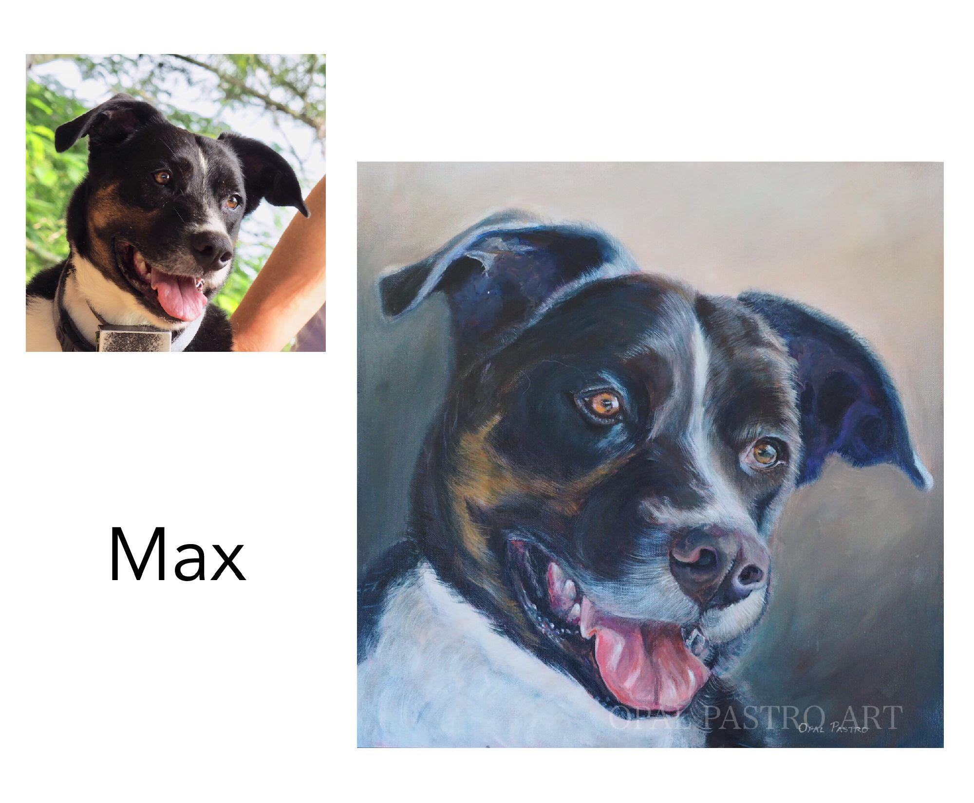 "Labrador mix - Acrylic on canvas 18"" x 18""  (45.72cm x 45.72cm)Private commissionBellingen, NSW——————————Max is a sweet Lab cross with heaps of energy and lots of love. I met him for his photo shoot and enjoyed lots of pats and cuddles. Doesn't he have the most beautiful smile?"